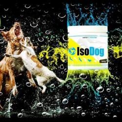 IsoDog ®