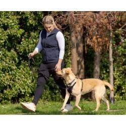 Harnais éducation anti-traction pour chiens