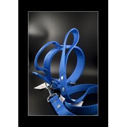 Collier El Perro  Grip Bleu