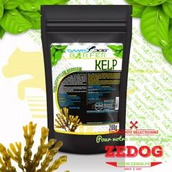 Kelp - Varech - complément alimentaire pour chien au BARF